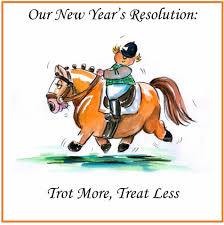Riding Resolutions?